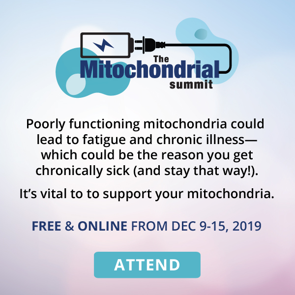 The Mitochondrial Summit
